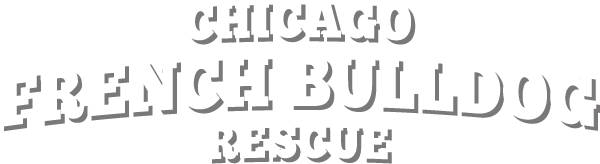 Chicago French Bulldog Rescue